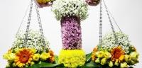 Какие цветы подарить Весам на юбилей?